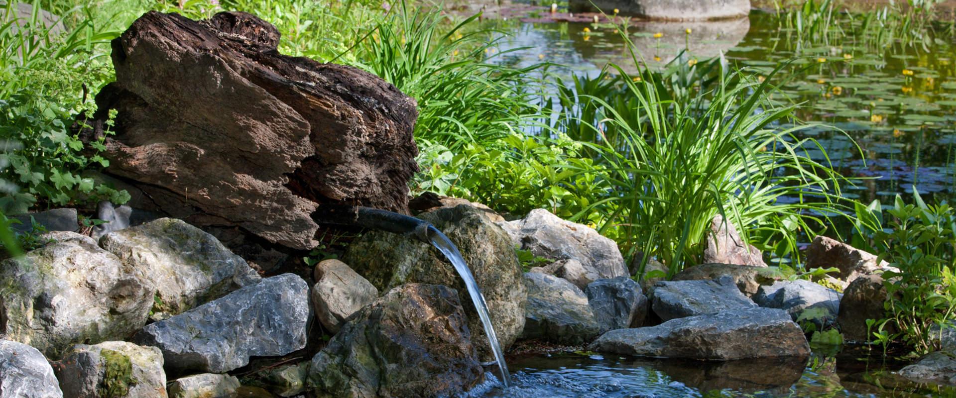 Feldmann Gartenbau harry feldmann gartenbau landschaftsbau pflanzarbeiten